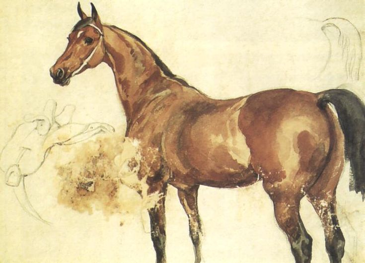 """Chestnut Horse"", pencil, watercolour, 20 x 28 cm, National Museum, Cracow"