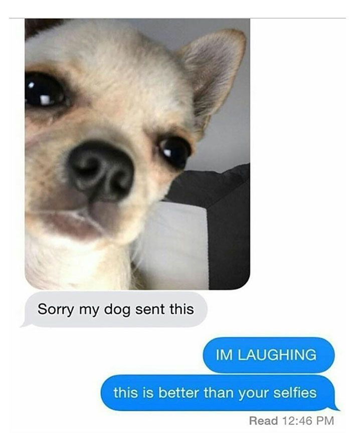 20 Funny Text Messages