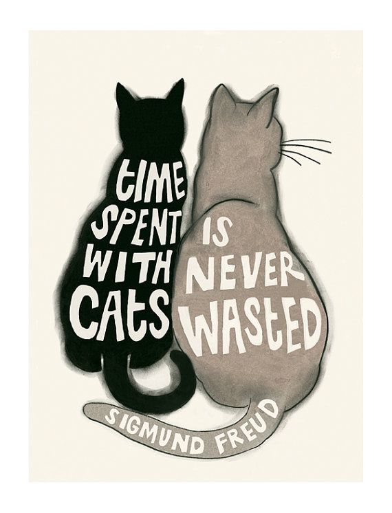 Typography Cat illustration - Cat print - Time Spent with Cats is Never Wasted - Sigmund Freud 4 X 6 = 10cm X 15cm print on heavy weight 170gsm