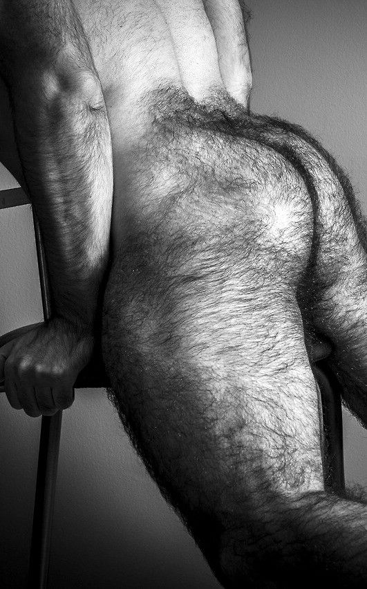 Black hairy holes