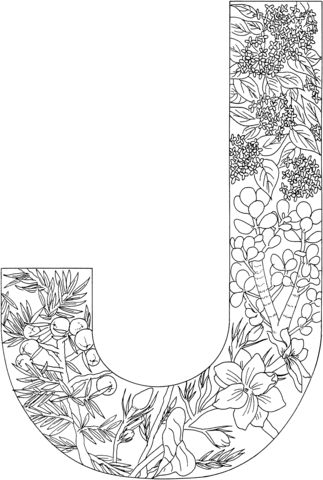 letter j coloring page from alphabet with plants