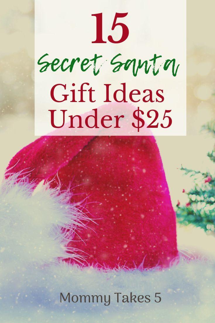 15 Secret Santa Gift Ideas for Budgets Under $25 ...