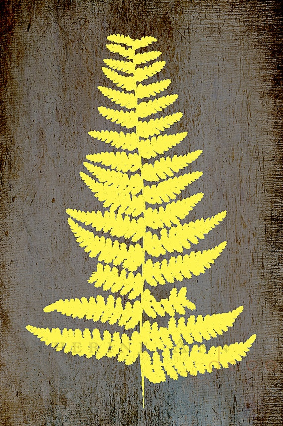 rustic fern print $35.00 Etsy - CatherineAnnDecor