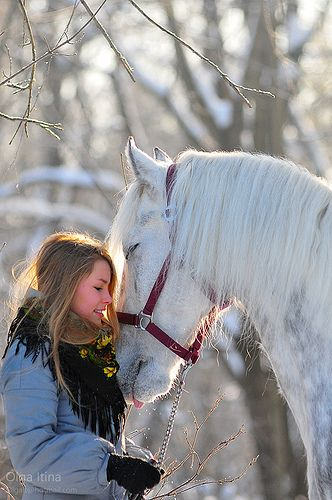 Winter horse love