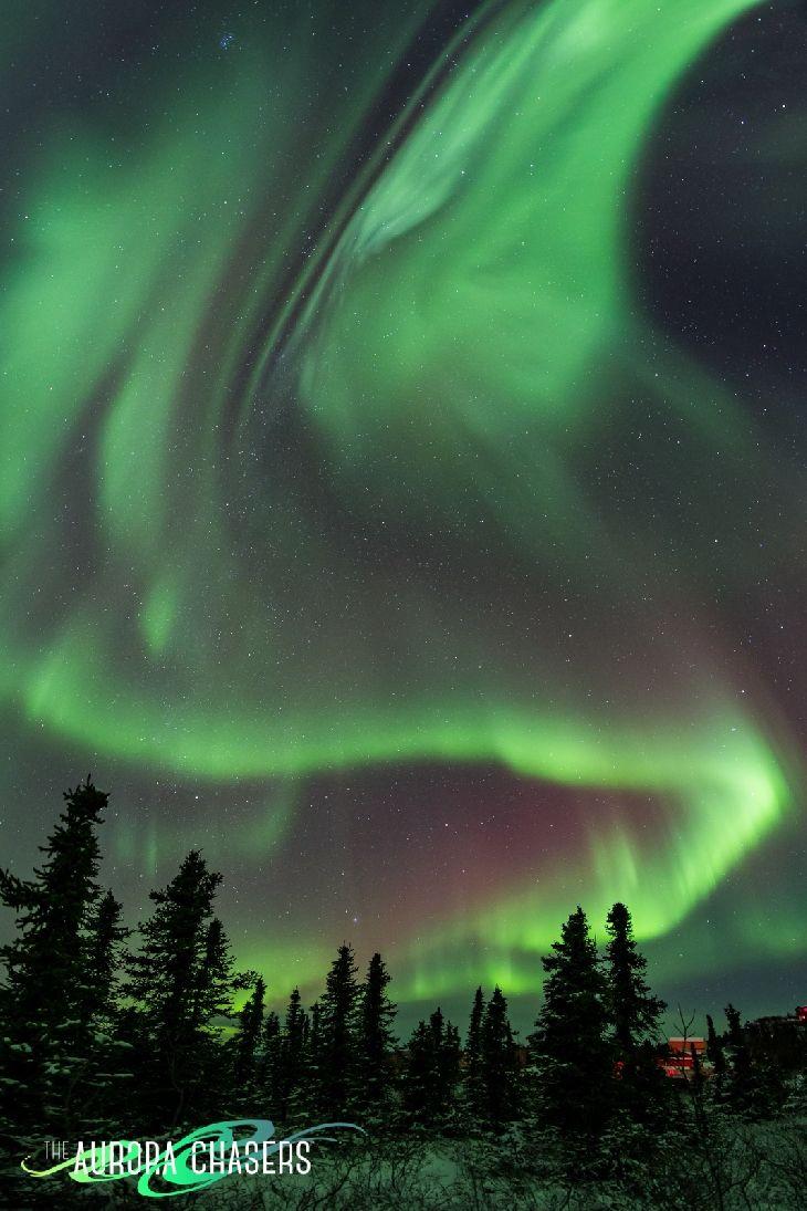 Auroras - Fairbanks, Alaska