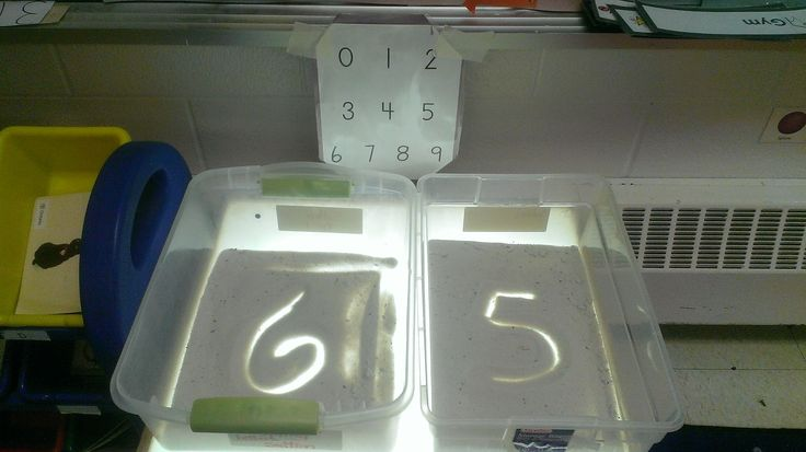 Light table number formation practice.