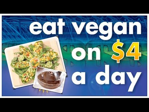 How To Eat Vegan On $4 A Day   Recipes & Resources   Bite Size Vegan