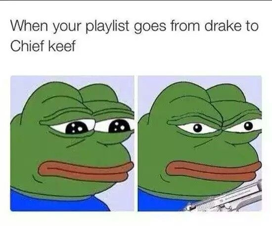 Funniest Pepe The Frog Memes From Instagram