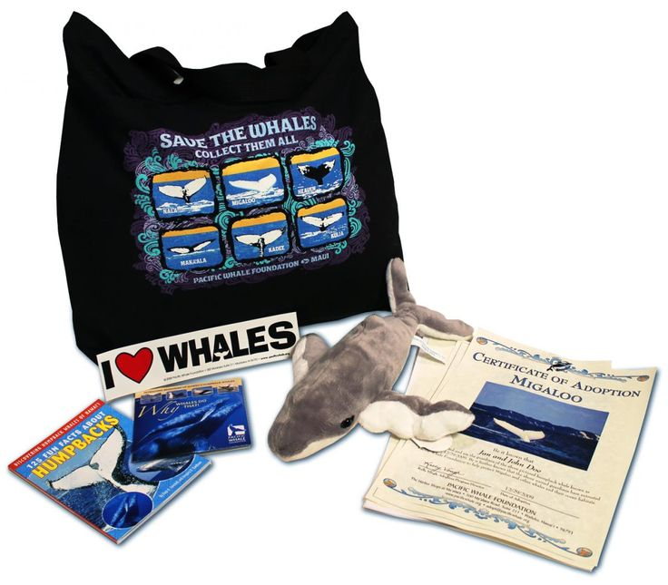 Adopt a Whale, Dolphin or Turtle   pacificwhale.org  We are going to do this in lieu of wedding favors