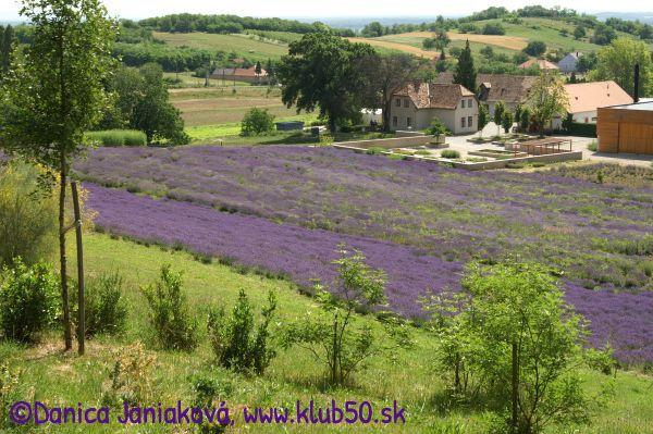 Pannonhalma - viac na www.klub50.sk - http://www.klub50.sk/cestujeme-a-ochutnavame