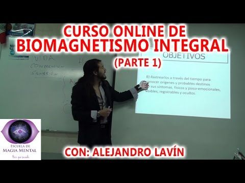 Homeóstasis, filosofía holística y Biomagnetismo - Alejandro Lavín - YouTube