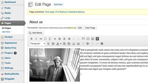 dashboard of wordpress website with how to edit instruction.
