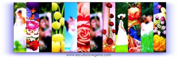 Con frutas y verduras talladas a mano, convertidas en verdaderas escenografías y esculturas aportamos para que tu boda se recuerde como un evento único.   http://luciogobbo.wix.com/decobodas// http://www.esculturavegetal.com/web/servicio/servicios.html http://decotallado.wix.com/fotoesculturavegetal