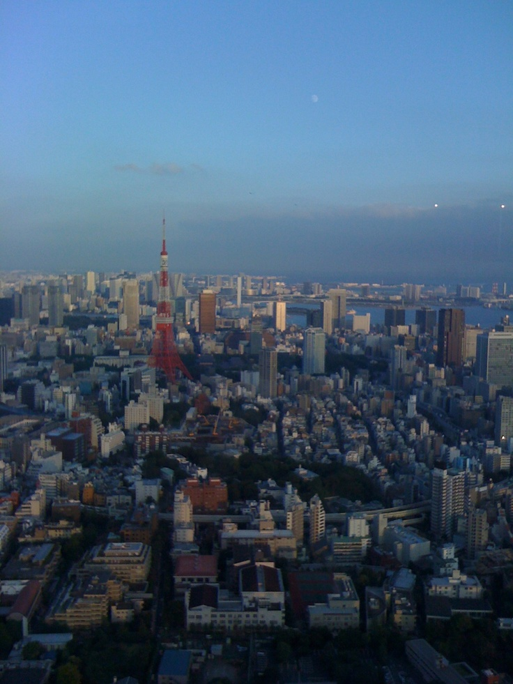 Tokyo, from Roppongi Hills Observatory