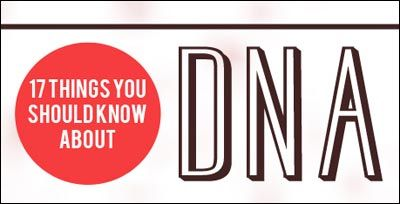 DNA Infographic: Dna Infographics, Foren Science, 17 Things, Nature Wall, Building Blocks, Dna Rna, Living Creatures, Forensic Science