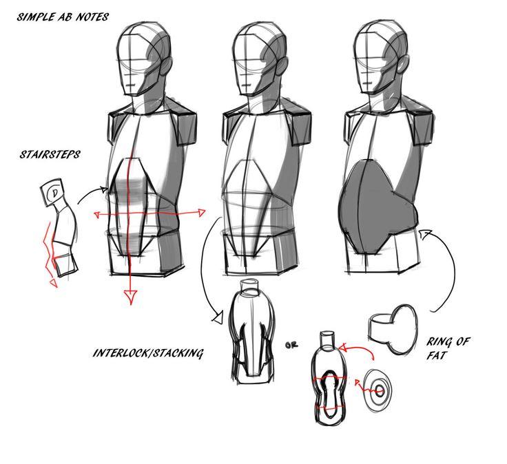 Charmant Zeichnung Anatomie Tutorial Ideen - Menschliche Anatomie ...