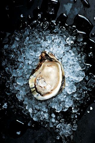 Oyster embedded in ice and rock salt. Both tough and delicate --- more mid-winter. (via thesteward)