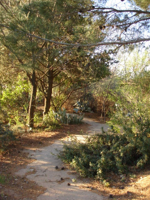 Trail at Sibley Nature Center in Midland, Texas