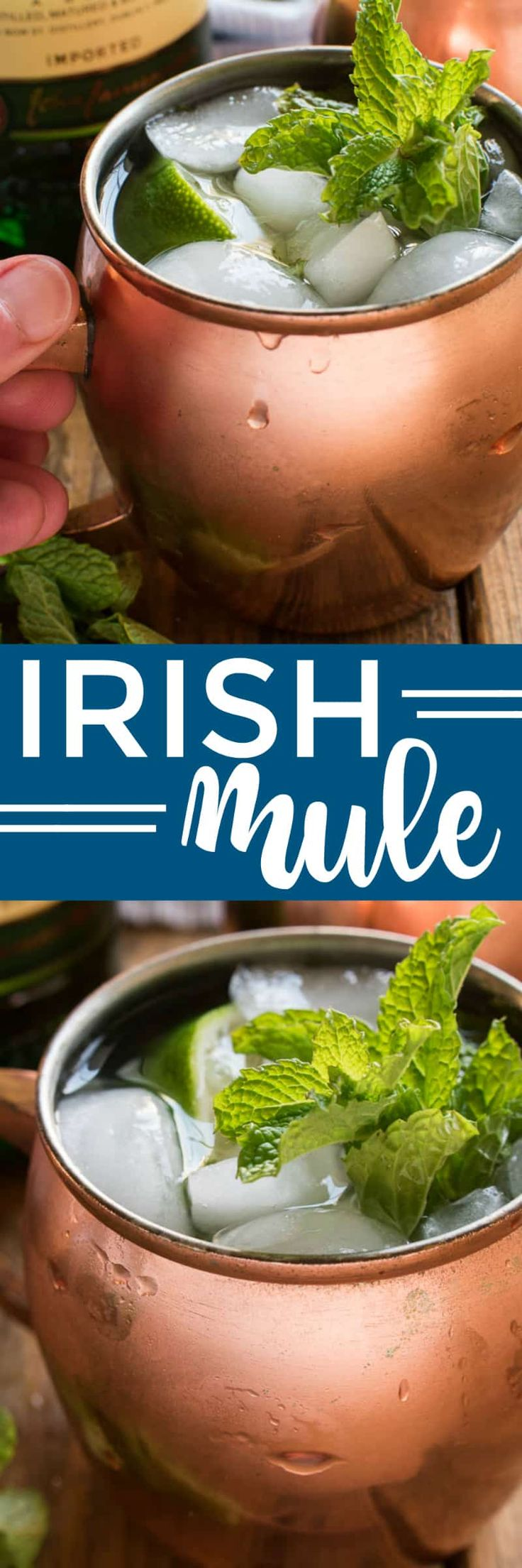 If you love Moscow Mules, you'll love this delicious Irish Mule twist! Made with Irish whiskey, ginger beer, lime juice, and muddled mint, this cocktail has everything you need to get you through the cold days of winter. They come together quickly, with just a few ingredients, and can be made individually or by the pitcherful. Which means they're perfect for game days, St. Patrick's Day, or weekends with friends! Any way you mix it, the Irish Mule is sure to become a new favorite for whiskey…