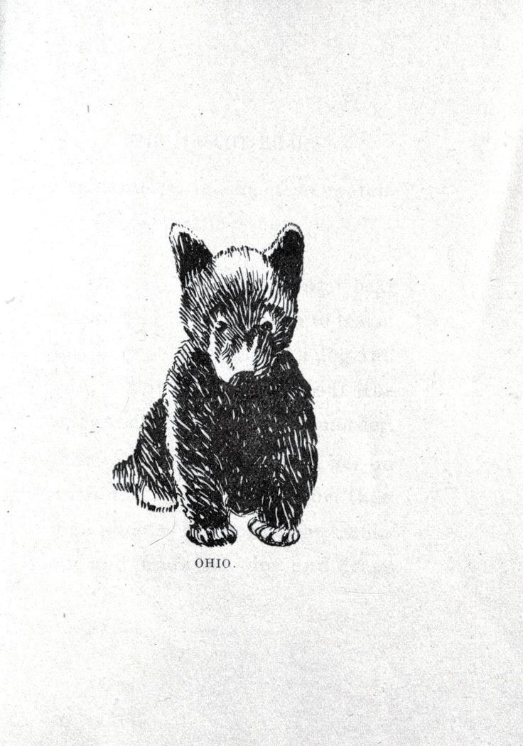 The 25 best black bear tattoo ideas on pinterest for Bear cub tattoo