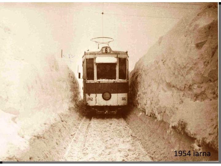 iarna din '54