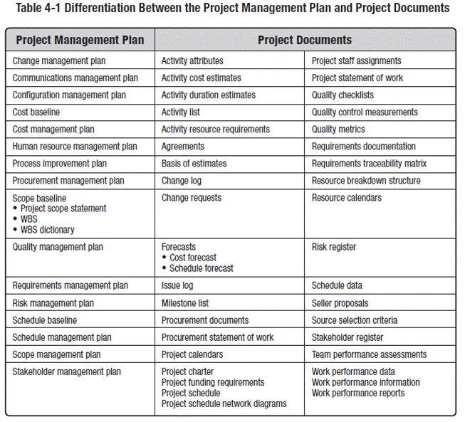 Table Showing Differences Between Projects Programs And