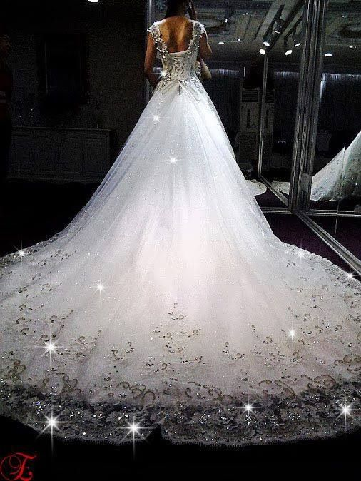 Long train wedding dress really pretty wedding gown for Wedding dress long train