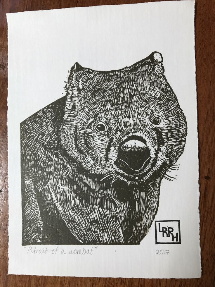 A personal favourite from my Etsy shop https://www.etsy.com/au/listing/513792783/wombat-portrait-linoprint-5-x-7-inches