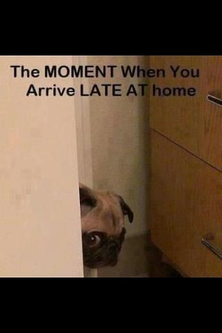 The moment when you arrive late at home