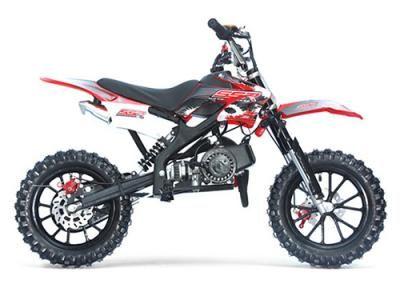 "DIR042 50cc Dirt Bike Automatic Transmission, Front/Rear Disc Breaks, 10"" Wheels $399.00"