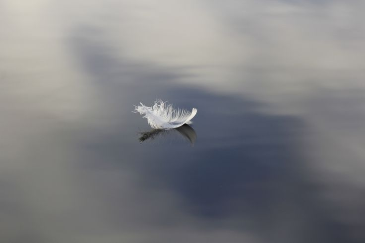Floating in the Clouds by Cathie Bell on 500px