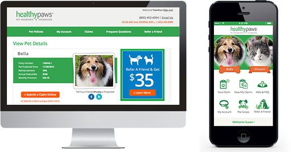 Dog Insurance & Puppy Insurance | Healthy Paws® Rated Best in 2015!