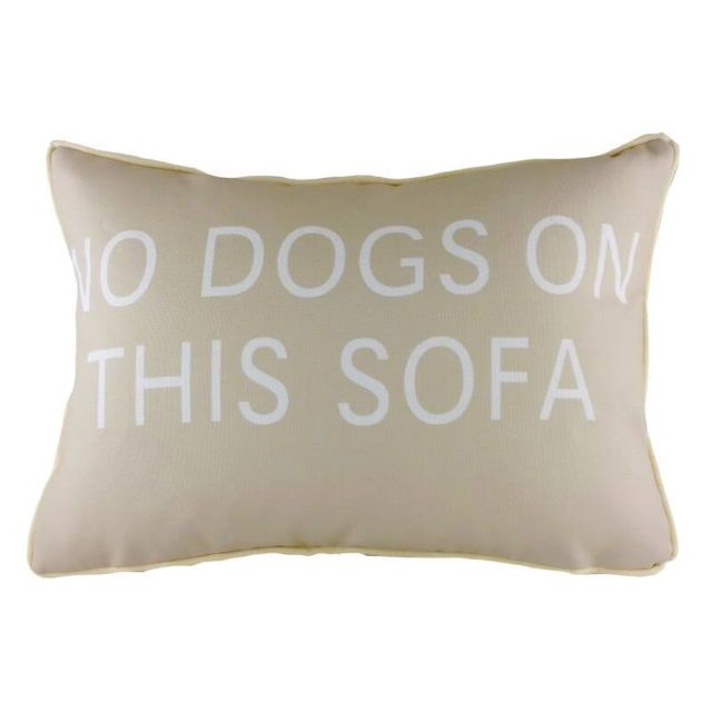 No Dogs On This Sofa Design Filled Cushion by Evans Lichfield