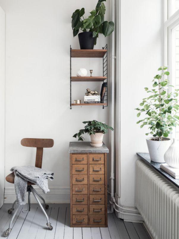 Vintage wohnen blog  770 besten wohnen mit pflanzen // urban jungle Bilder auf ...