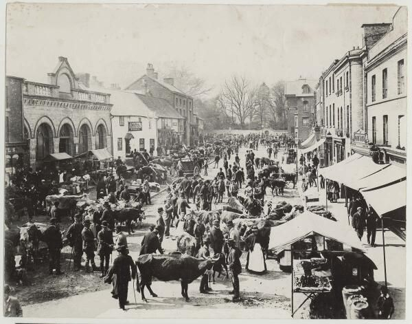Fair Day in Newtown,Wales c.1880