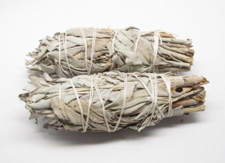 Adding sage to your campfire can keep the mosquitoes away!  Who would have known!