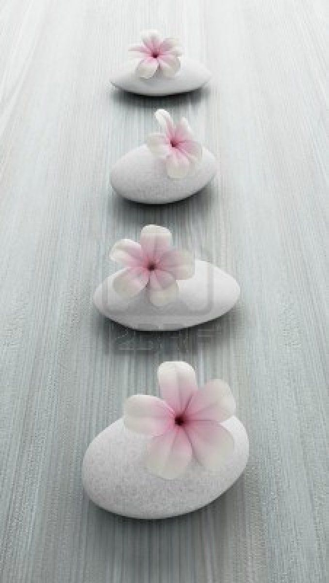 frangipani flower on white stone, zen spa on white wood