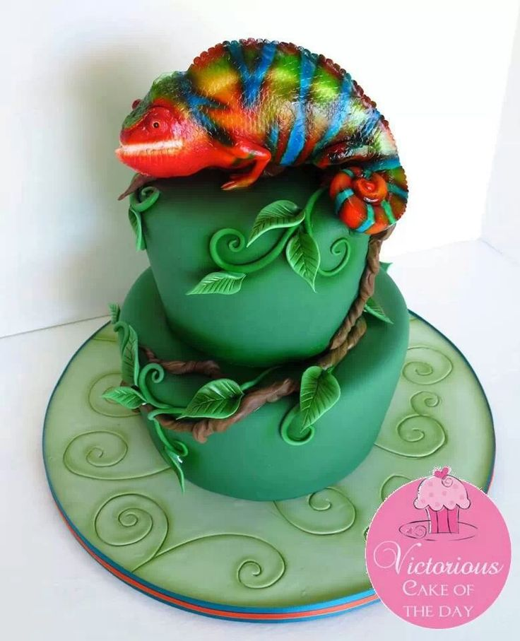 22 best reptile cakes images on pinterest novelty cakes animal chameleon cake pronofoot35fo Choice Image