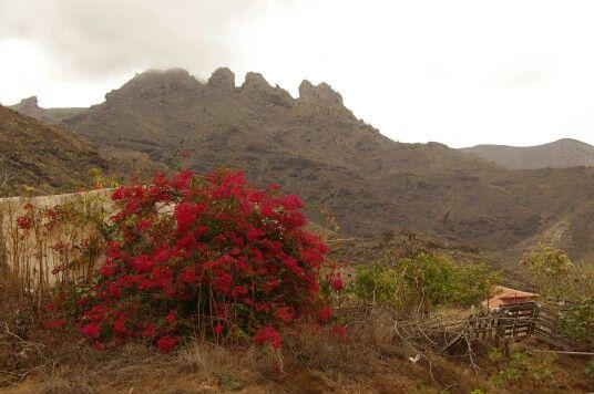 Relief montagneux et volcanique