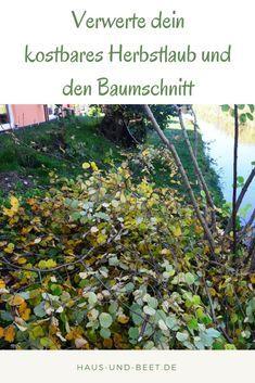 Verwertet Euer Kostbares Herbstlaub Und Den Baumschnitt Garten