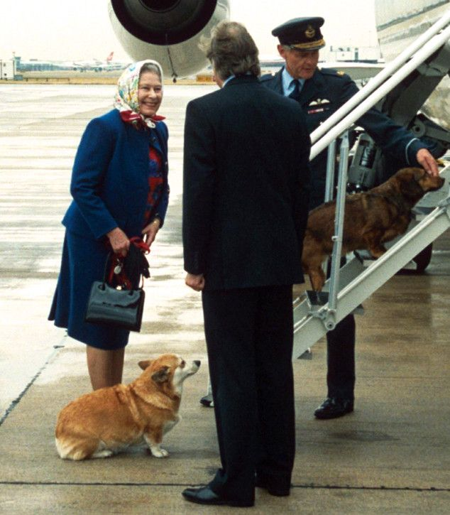 Peanut butter and jelly. Chrissy Teigen and John Legend. Queen Elizabeth II and her Corgis. Some ...