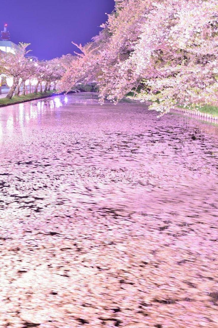 LifeisVeryBeautiful - lifeisverybeautiful:  Hirosaki Park, Aomori, Japan...