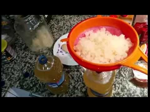 Kefir de agua. Preparación e información - YouTube