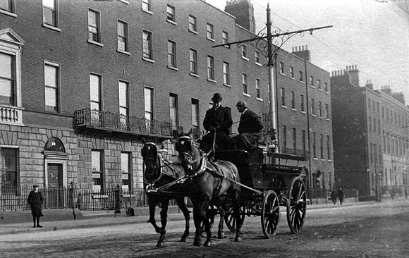 Horses and carriage on Merrion Square