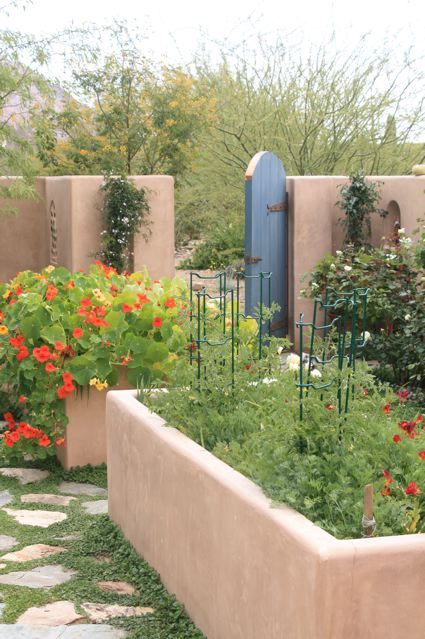 Great Find This Pin And More On Arizona Gardening U0026 Landscaping By Catsherbs.