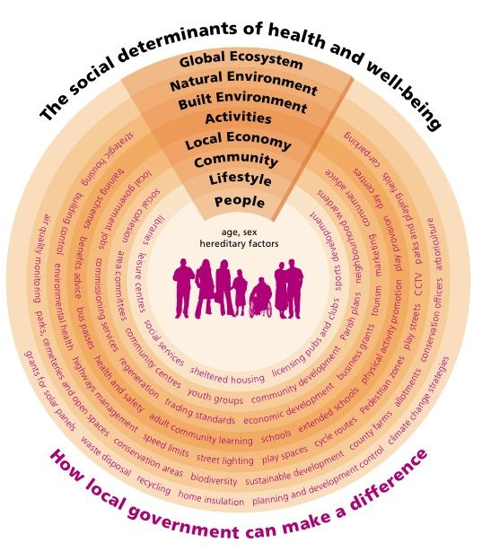 "social determinants of health sdoh Social, economic, and behavioral factors can influence the trajectory of one's health so significantly they have been coined the ""social determinants of health."