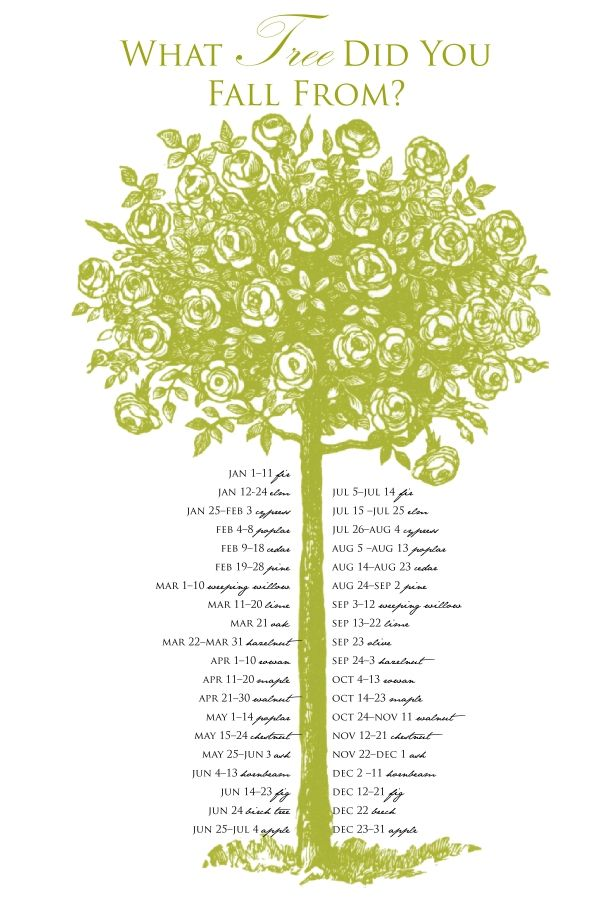 celtic tree calendar | celtic tree astrology was introduced by celtics the diverse group