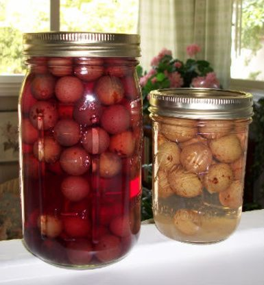 Muscadine Grape Juice Recipe - Food.com: Food.com