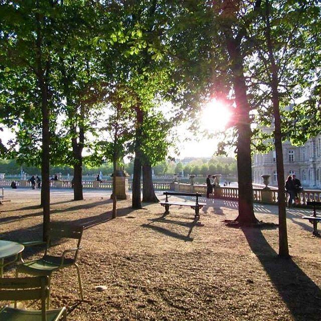 🇫🇷Rays of light peaking through ☀ Jardin du Luxembourg. One of my favourite gardens in #paris #saintgermaindesprès #jardinduluxemburg #raysofsun #raysoflight #trees #treetops #jardin #garden #melbournelifelovetravel @jardin_du_luxembourg