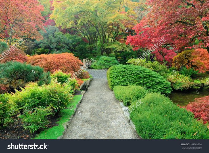 Walking In Japanese Garden Of The National Historical Site Butchart Gardens, Vancouver Island, British Columbia, Canada Foto d'archivio 147542234 : Shutterstock